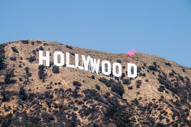 Hollywood Der Flamingo