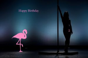 Happy Birthday 2 Der Flamingo