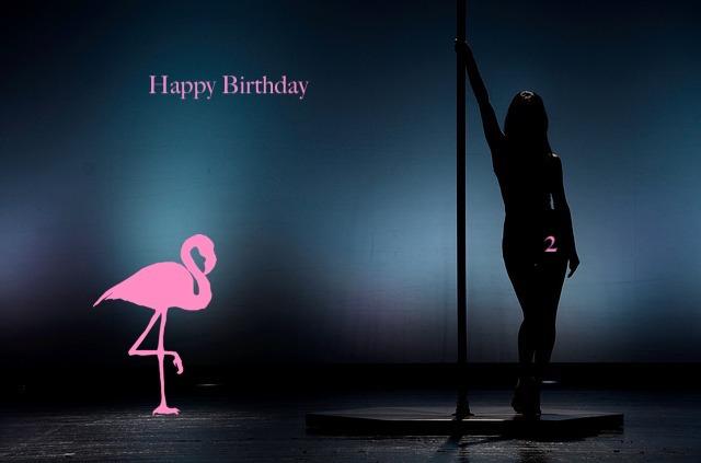 Happy Birthday 2 Der Flamingo